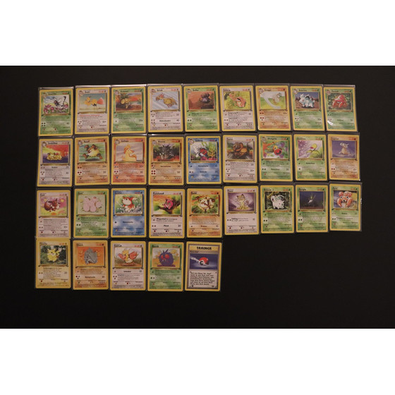 Komplettes 1st Edition Dschungel C/UC-Set - Alle Commons...